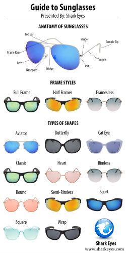 Sunglasses Parts & Shapes Infographic